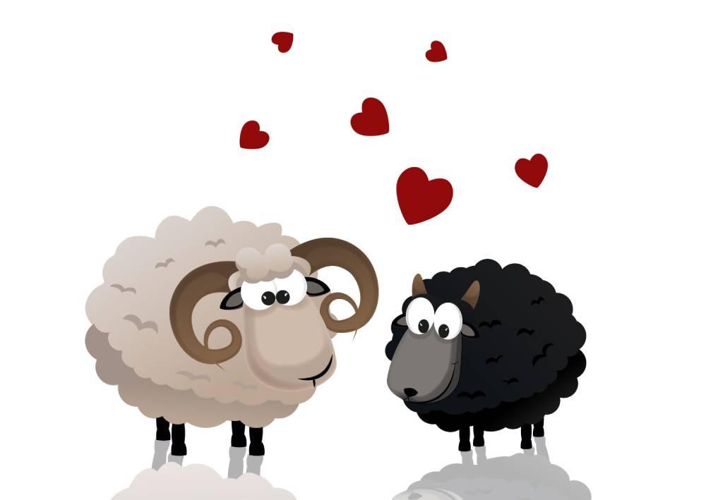 Ilustracija crne i bele ovce koja prikazuje kako se u vizuelnom predstavljanju suprotnosti zaista privlače